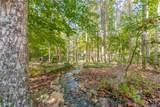 489 Emerald Lake Lane - Photo 74