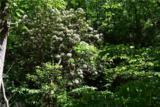 221 Ash Trail - Photo 21