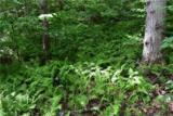 221 Ash Trail - Photo 24