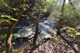 221 Ash Trail - Photo 7