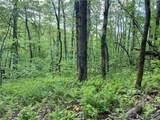 0 Locust Peg Road - Photo 8