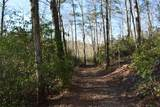 33.71 Acres Rocktree Road - Photo 24