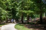 330 Villa Magnolia Lane - Photo 51