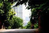 238 Walker Street - Photo 20