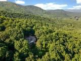 245 Sassafras Mountain Trail - Photo 7