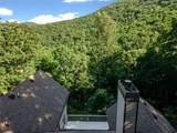 245 Sassafras Mountain Trail - Photo 8