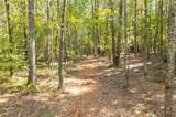 Lot 18 Mineral Springs Road - Photo 10