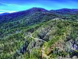 1001 Black Bear Trail - Photo 9