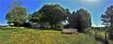 1772 Pond Fork Church Road - Photo 15