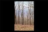 Lt 31L Mountainside Drive - Photo 18