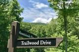 Lt 164 Trailwood Drive - Photo 4