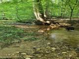 544 Bearslide Hollow - Photo 13