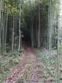 1 Long Swamp Church Road - Photo 5