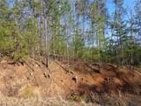 1001 Black Bear Trail - Photo 12