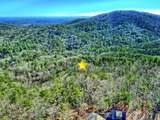 1001 Black Bear Trail - Photo 8