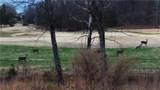 2170 Saddle Creek Drive - Photo 13