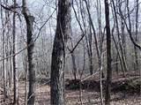 1 Long Swamp Church Road - Photo 12