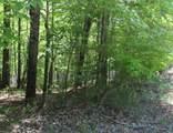 LT 5 Hunter Ridge - Mountain Lake Road - Photo 14