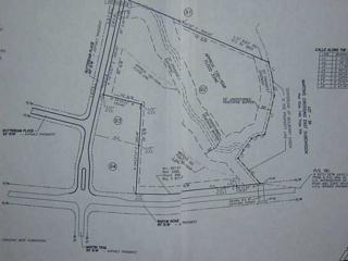 4646 Martins Crossing West Drive, Flowery Branch, GA 30542 (MLS #5261072) :: North Atlanta Home Team