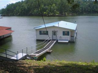 9 Harbor Drive, Cartersville, GA 30121 (MLS #5322516) :: North Atlanta Home Team