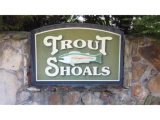 0 Trout Shoals Road, Dawsonville, GA 30534 (MLS #5573404) :: North Atlanta Home Team