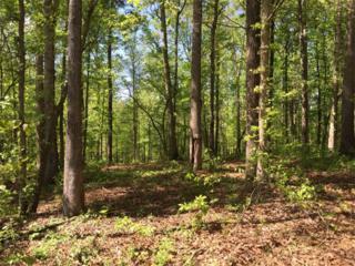 217 Trilium Trail, Pendergrass, GA 30567 (MLS #5578197) :: North Atlanta Home Team