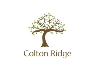 184 Colton Drive, Calhoun, GA 30701 (MLS #5585039) :: North Atlanta Home Team