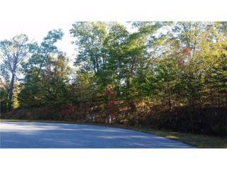 0 Logsplitter Pass, Dahlonega, GA 30533 (MLS #5609670) :: North Atlanta Home Team