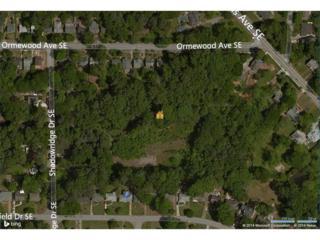 770 Shadowridge Drive SE, Atlanta, GA 30316 (MLS #5621939) :: North Atlanta Home Team