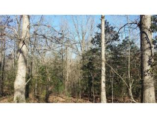 Lot 7 Kings Bridge Way, Clarkesville, GA 30523 (MLS #5625458) :: North Atlanta Home Team