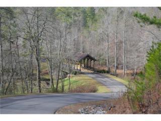 19 Bridge Road, Ellijay, GA 30540 (MLS #5628801) :: North Atlanta Home Team