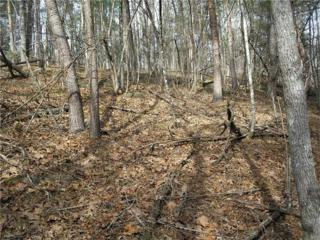 0 Old Deer Path Way, Cleveland, GA 30528 (MLS #5637156) :: North Atlanta Home Team