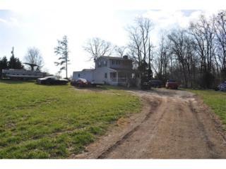 840 Carlisle Road, Dawsonville, GA 30534 (MLS #5641553) :: North Atlanta Home Team