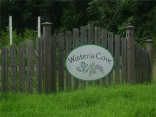 0 Wisteria Cove Court, Mansfield, GA 30055 (MLS #5645310) :: North Atlanta Home Team
