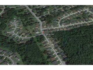 0 Thrasher Road, Hampton, GA 30228 (MLS #5651569) :: North Atlanta Home Team