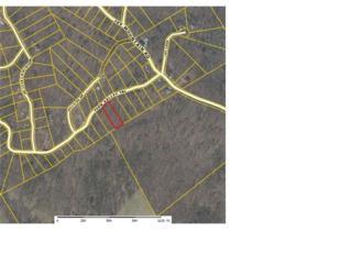 0 Fern Valley Trail, Clarkesville, GA 30523 (MLS #5668263) :: North Atlanta Home Team