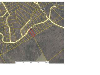 0 Fern Valley Trail, Clarkesville, GA 30523 (MLS #5668287) :: North Atlanta Home Team