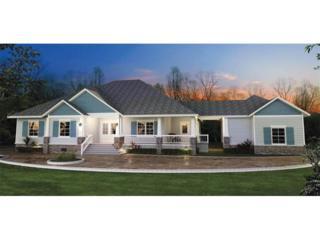 53 Lower Creek Trail, Ellijay, GA 30540 (MLS #5672995) :: North Atlanta Home Team