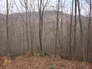 LT 18 Wilderness Way, Ellijay, GA 30540 (MLS #5673497) :: North Atlanta Home Team