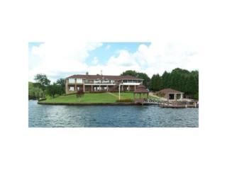 301 River Point Drive, Other-Alabama, GA 36278 (MLS #5676035) :: North Atlanta Home Team