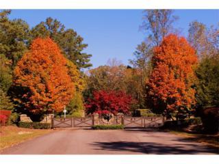 LOT 42 Harris Creek Drive, Ellijay, GA 30540 (MLS #5683669) :: North Atlanta Home Team