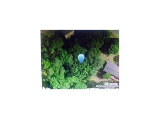 4202 Scenic Mountain Drive, Snellville, GA 30039 (MLS #5690369) :: North Atlanta Home Team