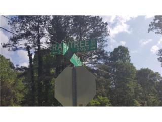 2988 Raintree Drive SE, Conyers, GA 30094 (MLS #5694234) :: North Atlanta Home Team