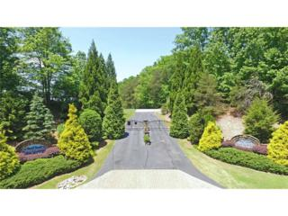 Lot 6 Quiet Waters Drive, Dahlonega, GA 30533 (MLS #5697091) :: North Atlanta Home Team