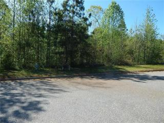 268 Beacon Drive, Maysville, GA 30558 (MLS #5703797) :: North Atlanta Home Team