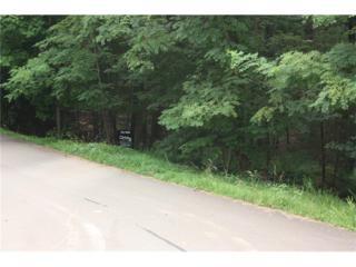 Lot16 Outback Ridge Trail, Jasper, GA 30143 (MLS #5706711) :: North Atlanta Home Team