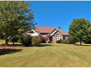 116 Bonnie Pearl Lane, Cleveland, GA 30528 (MLS #5715024) :: North Atlanta Home Team