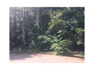 176 Hauteur Place SW, Lilburn, GA 30047 (MLS #5722441) :: North Atlanta Home Team