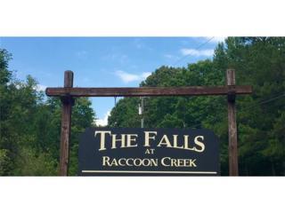 00 High Falls Drive, Dallas, GA 30132 (MLS #5740907) :: North Atlanta Home Team