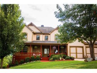 701 Amicalola Drive, Dawsonville, GA 30534 (MLS #5741192) :: North Atlanta Home Team